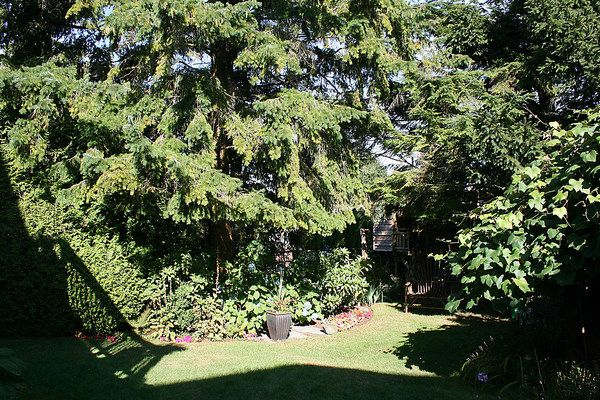 Photo 33: Photos: 4073 W 19TH Avenue in Vancouver: Dunbar House for sale (Vancouver West)  : MLS®# V995201