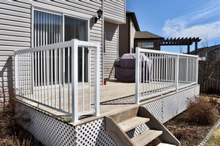 Photo 35: 142 KINGSLAND Heights SE: Airdrie Detached for sale : MLS®# A1020671