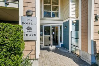 """Photo 4: 201 275 ROSS Drive in New Westminster: Fraserview NW Condo for sale in """"THE GROVE"""" : MLS®# R2602953"""