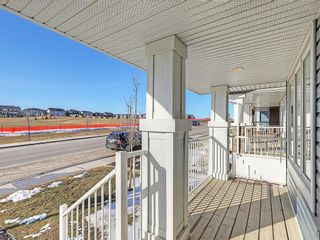 Photo 38: 223 EVANSTON Way NW in Calgary: Evanston House for sale : MLS®# C4178765
