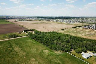 Photo 12: 49279 RR250: Rural Leduc County Rural Land/Vacant Lot for sale : MLS®# E4141338