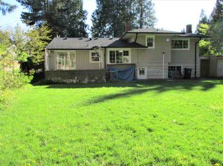 Photo 34: 4114 GRACE Crescent in North Vancouver: Canyon Heights NV House for sale : MLS®# R2574810