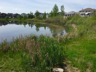 Photo 41: 129 West Creek Pond: Chestermere Detached for sale : MLS®# A1133804