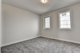 Photo 38: 216 Red Sky Terrace NE in Calgary: Redstone Detached for sale : MLS®# A1125516