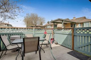 Photo 20: 2738 Dovely Park SE in Calgary: Dover Detached for sale : MLS®# A1104684