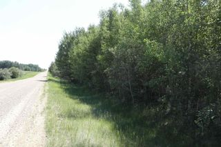 Photo 9: TWP 494 RR 42: Rural Leduc County Rural Land/Vacant Lot for sale : MLS®# E4252228