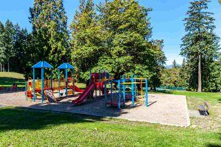 Photo 17: 8142 WEDGEWOOD Street in Burnaby: Burnaby Lake 1/2 Duplex for sale (Burnaby South)  : MLS®# R2108883
