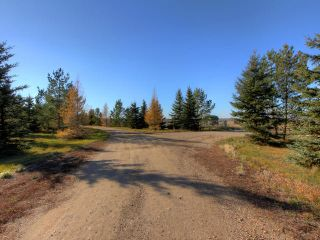 Photo 8: 53134 RR 225 Road: Rural Strathcona County Land Commercial for sale : MLS®# E4265746