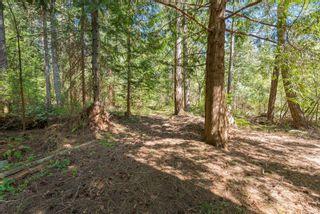 Photo 28: 4928 Willis Way in Courtenay: CV Courtenay North House for sale (Comox Valley)  : MLS®# 873457