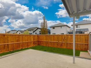 Photo 25: 415 STONEGATE Rise NW: Airdrie Semi Detached for sale : MLS®# C4299207