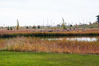 Photo 41: 259 Bonaventure Drive in Winnipeg: Bonavista Residential for sale (2J)  : MLS®# 202117321