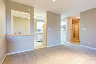 """Photo 5: 303 22351 ST ANNE Avenue in Maple Ridge: West Central Condo for sale in """"Downtown"""" : MLS®# R2080492"""