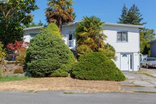 Photo 1: 4211 Belvedere Rd in VICTORIA: SE Lake Hill House for sale (Saanich East)  : MLS®# 769195