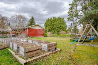 """Photo 37: 4537 SADDLEHORN Crescent in Langley: Salmon River House for sale in """"Salmon River"""" : MLS®# R2553970"""