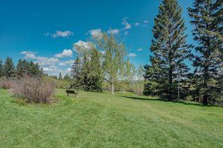 Photo 39: 139 Wildwood Drive SW in Calgary: Wildwood Detached for sale : MLS®# C4305016