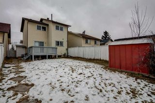 Photo 34: 64 Whitmire Road NE in Calgary: Whitehorn Detached for sale : MLS®# A1055737