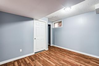 Photo 30: 18 Erin Meadow Close SE in Calgary: Erin Woods Detached for sale : MLS®# A1143099