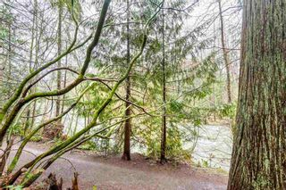 Photo 16: 1285 RIVER Drive in Coquitlam: River Springs House for sale : MLS®# R2160017