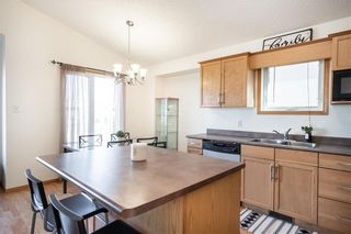 Photo 11: 123 Redonda Street in Winnipeg: Canterbury Park Residential for sale (3M)  : MLS®# 202107335