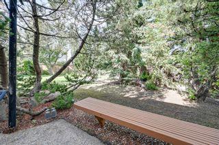 Photo 37: 256 BURTON Road in Edmonton: Zone 14 House for sale : MLS®# E4262280