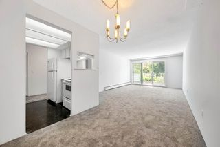 """Photo 2: 313 2336 WALL Street in Vancouver: Hastings Condo for sale in """"Harbour Shores"""" (Vancouver East)  : MLS®# R2597261"""