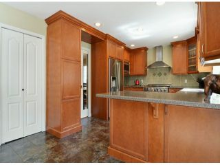 """Photo 7: 22370 47A Avenue in Langley: Murrayville House for sale in """"Upper Murrayville"""" : MLS®# F1407646"""