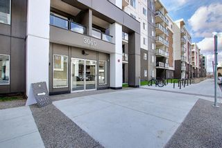 Photo 33: 3420 4641 128 Avenue NE in Calgary: Skyview Ranch Apartment for sale : MLS®# A1106326