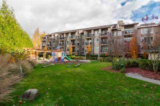 """Photo 35: 404 21009 56 Avenue in Langley: Salmon River Condo for sale in """"Cornerstone"""" : MLS®# R2519052"""