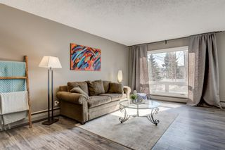 Photo 4: 114 6919 Elbow Drive SW in Calgary: Kelvin Grove Apartment for sale : MLS®# A1087429