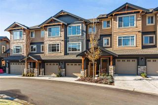 """Photo 1: 112 11305 240 Street in Maple Ridge: Cottonwood MR Townhouse for sale in """"MAPLE HEIGHTS"""" : MLS®# R2220533"""