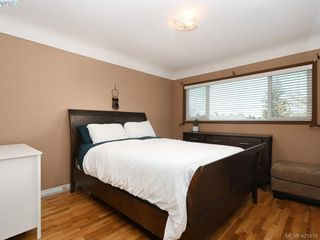 Photo 9: 4145 Birtles Ave in VICTORIA: SW Glanford House for sale (Saanich West)  : MLS®# 835004