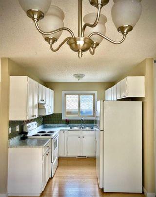 Photo 9: 22 Aberdare Road NE in Calgary: Abbeydale Detached for sale : MLS®# A1144207