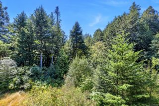 Photo 37: 1994 Gillespie Rd in : Sk 17 Mile House for sale (Sooke)  : MLS®# 850902