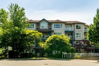 """Photo 1: 214 8115 121A Street in Surrey: Queen Mary Park Surrey Condo for sale in """"The Crossing"""" : MLS®# R2594503"""