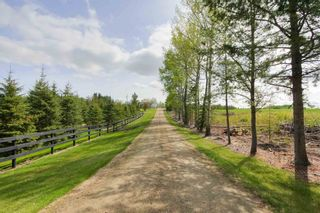 Photo 3: 52117 RGE RD 53: Rural Parkland County House for sale : MLS®# E4246255