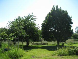 Photo 18: 6235 N Island Hwy in COURTENAY: CV Courtenay North House for sale (Comox Valley)  : MLS®# 833224