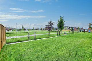 Photo 42: 137 Redstone Common NE in Calgary: Redstone Semi Detached for sale : MLS®# A1132067
