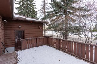 Photo 17: 540 48 Avenue SW in Calgary: Elboya Detached for sale : MLS®# A1059690
