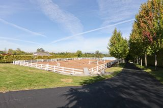 Photo 14: 20486 1ST Avenue in Langley: Campbell Valley House for sale : MLS®# F1114213