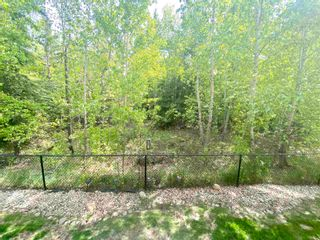 Photo 38: 31 903 RUTHERFORD Road in Edmonton: Zone 55 Townhouse for sale : MLS®# E4245385