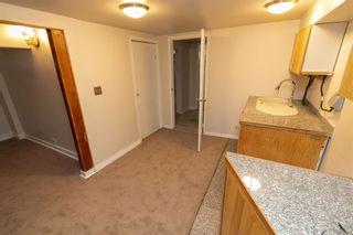 Photo 34: 10161 92 Street in Edmonton: Zone 13 House for sale : MLS®# E4262113