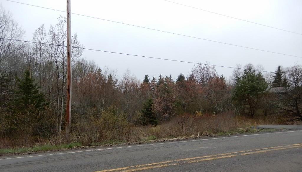 Main Photo: Highway 4 in Salt Springs: 108-Rural Pictou County Vacant Land for sale (Northern Region)  : MLS®# 202111268