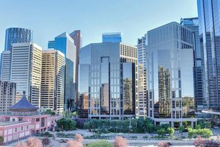 Photo 13: 817 222 Riverfront Avenue SW in Calgary: Eau Claire Apartment for sale : MLS®# A1101898