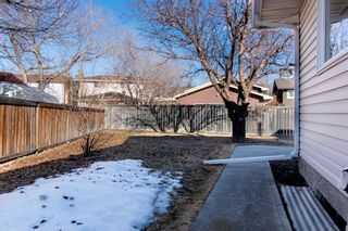 Photo 38: 132 Silver Springs Green NW in Calgary: Silver Springs Detached for sale : MLS®# A1082395