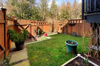 "Photo 27: 111 11305 240 Street in Maple Ridge: Cottonwood MR Townhouse for sale in ""MAPLE HEIGHTS"" : MLS®# R2558286"
