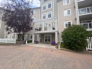 Photo 11: 410 290 Shawville Way SE in Calgary: Shawnessy Apartment for sale : MLS®# A1138417