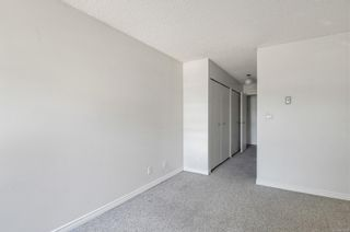 Photo 12: 201 585 Dogwood St in : CR Campbell River Central Condo for sale (Campbell River)  : MLS®# 879500