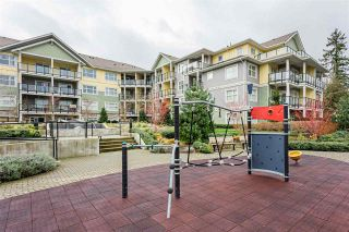 """Photo 23: 402 5020 221A Street in Langley: Murrayville Condo for sale in """"Murrayville House"""" : MLS®# R2537079"""