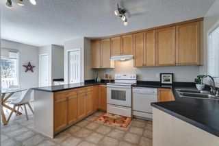 Photo 14: 94 Royal Elm Way NW in Calgary: Royal Oak Detached for sale : MLS®# A1107041