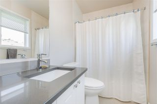 Photo 41: 7767 96 Street in Edmonton: Zone 17 Townhouse for sale : MLS®# E4215411